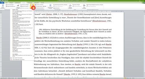 Kurzverweis Quelle Literaturverzeichnis