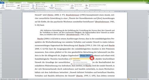 Literaturverzeichnis Word Kontextmenü Kurzverweis