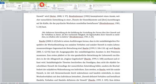 Literaturverzeichnis Word lokale Literaturdatenbank Quellennachweise