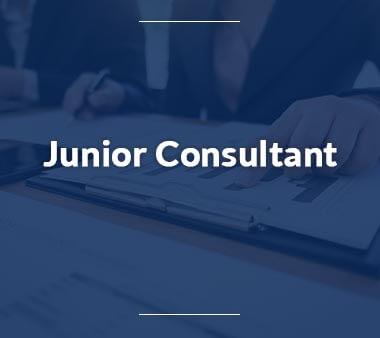 Junior Consultant Berufe mit Zukunft