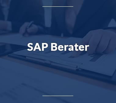 SAP Berater IT-Berufe